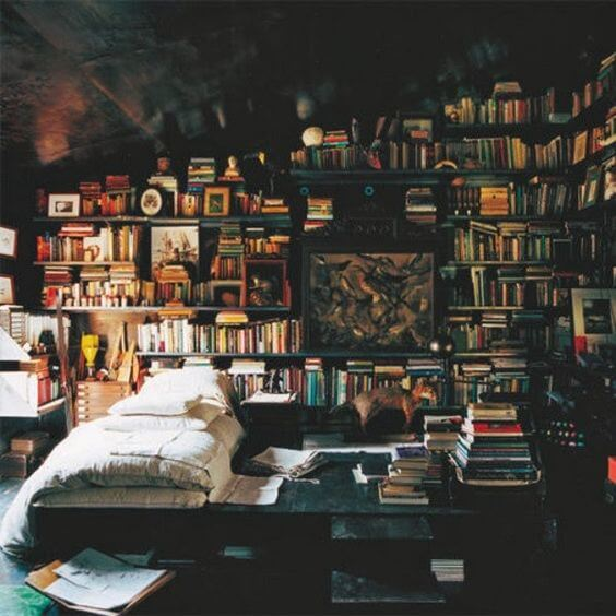 Dramatic Bedroom Library for Teen Boy